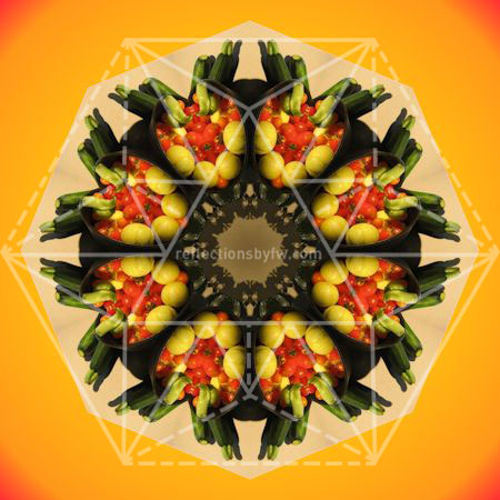 Harvest Bounty Mandala