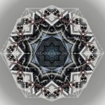 leap-frog-in-chicago-mandala-reflections-by-fw