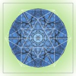 Elm-Branches-Blue-Sky-mandala-Reflections-by-fw