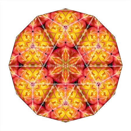 pink-and-yellow-double-roses-mandala