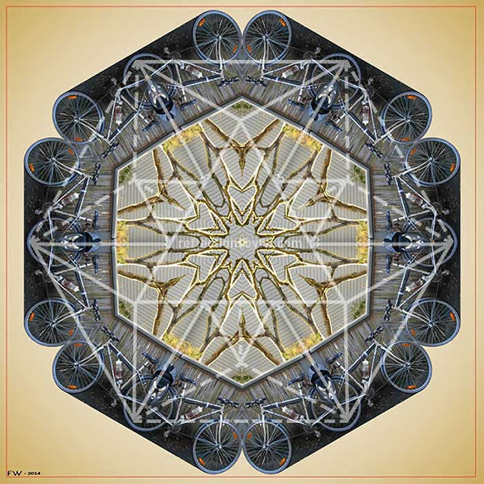Bicycle with Gold Branches II Mandala